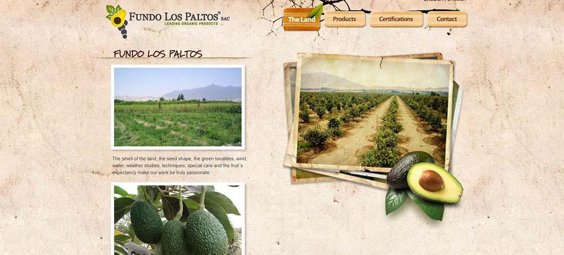 Fundo Los Paltos Websites with Inspiring Backgrounds