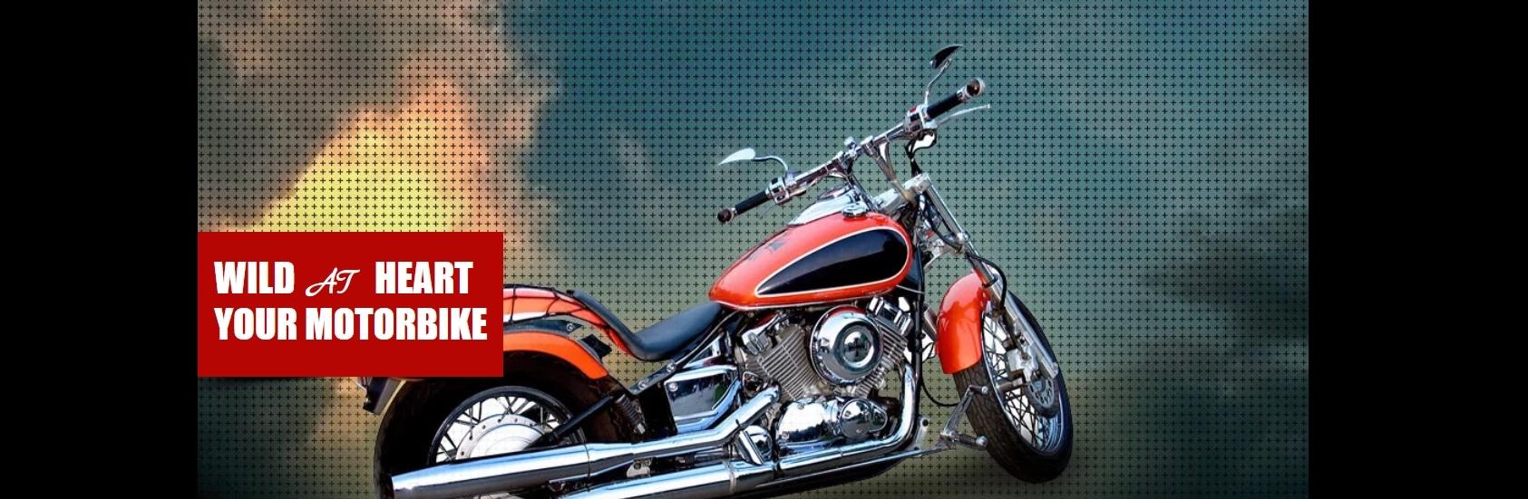 Wild Motorbike Website Template _ WIX