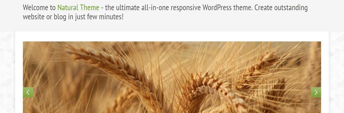 Natural - Powerful Responsive WordPress Theme