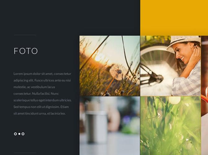 Photo Stylish Website Template Free PSD