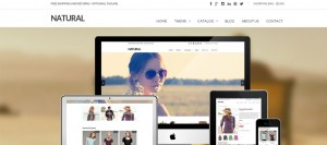 20 New Premium Shopify Website Templates