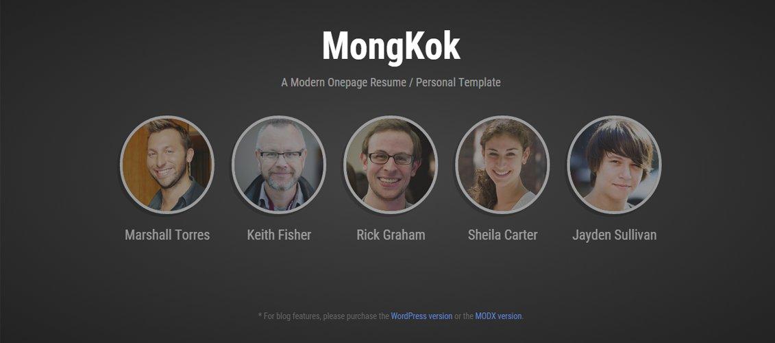 MongKok - Modern Onepage Resume  Personal Theme