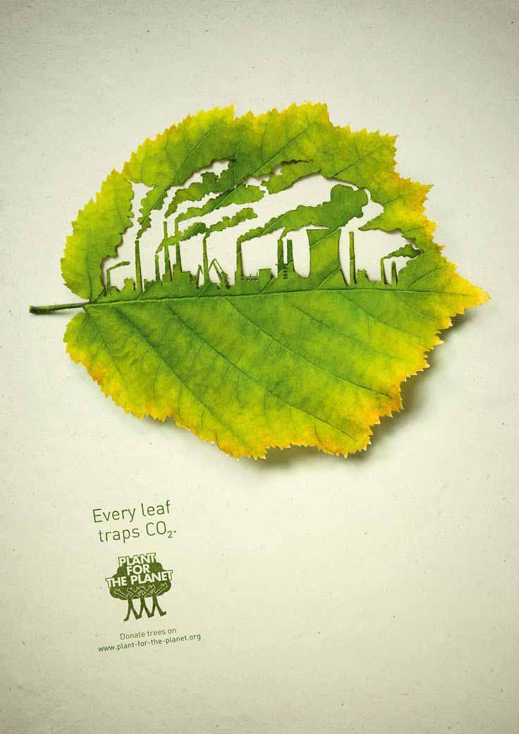 eco Print Inspiration