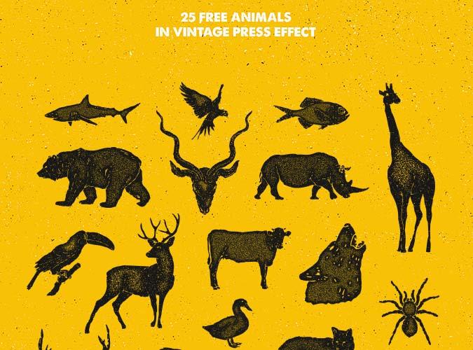 25 Hand-Drawn Animal Pack