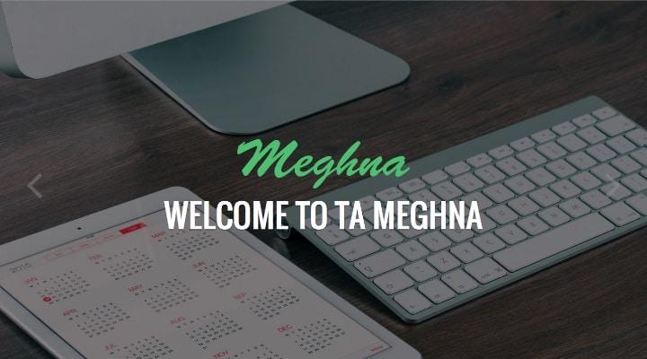 TA Meghna - Free Multi-Purpose WordPress Theme