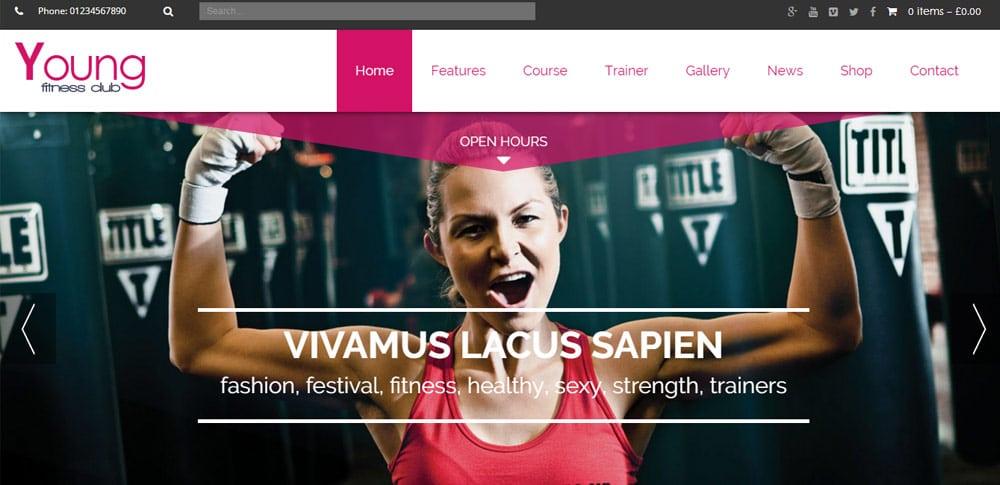20 Energetic Fitness WordPress Themes