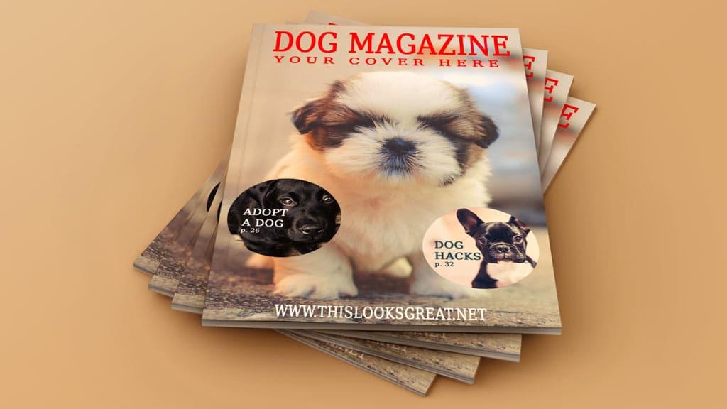 20 Set of Magazine Cover Mockups