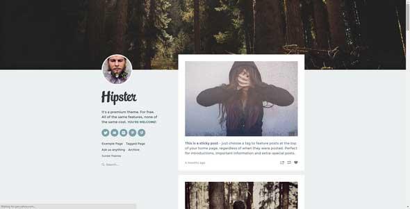 21 Hipster Tumblr Theme