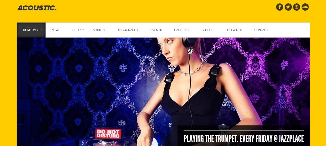 Acoustic---Premium-Music-WordPress-Theme-Preview---ThemeForest