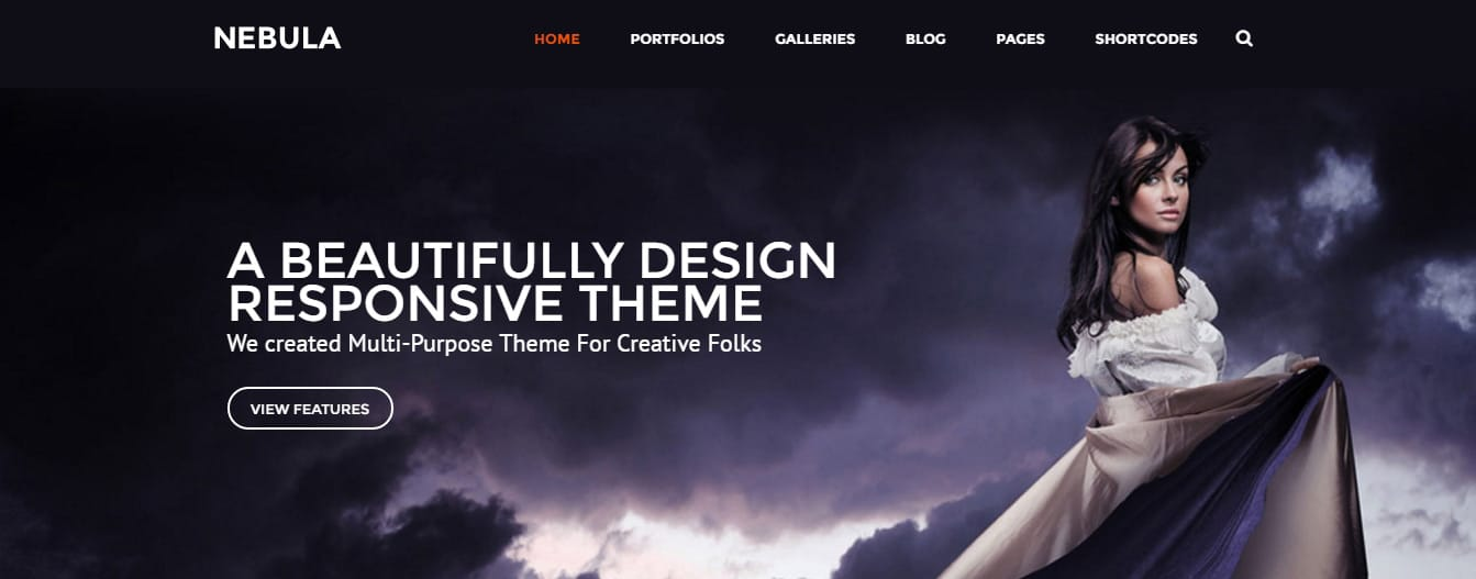 Premium-Wordpress-Theme-_-Nebula