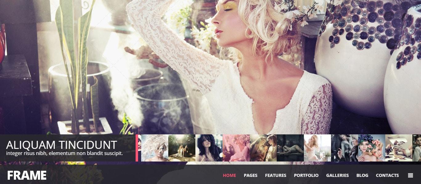 -WordPress-Themes--Website-Templates