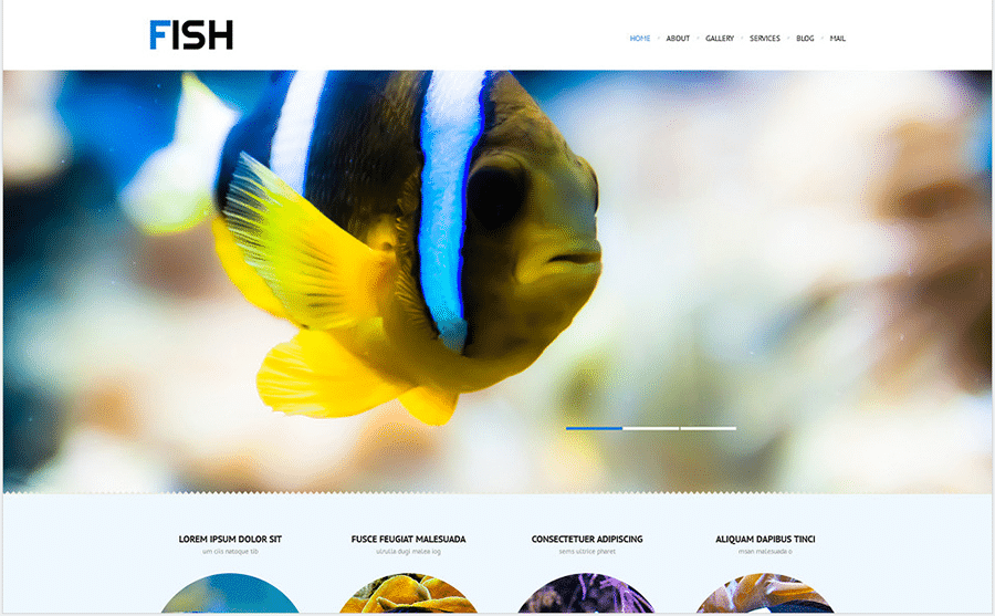 10-fish-wordpress-theme-images