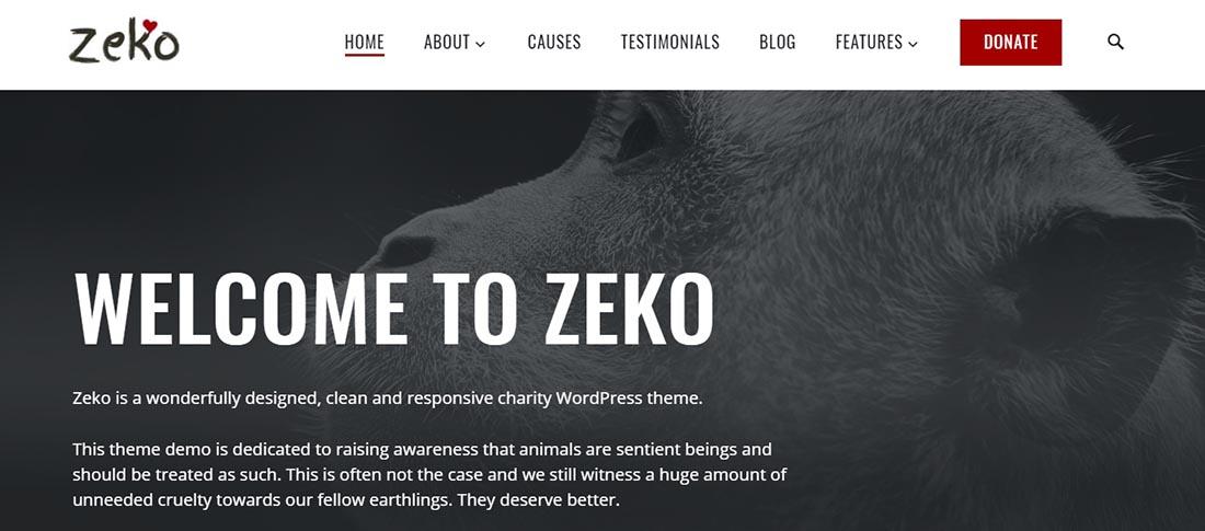 Zeko - Non Profit WordPress Theme
