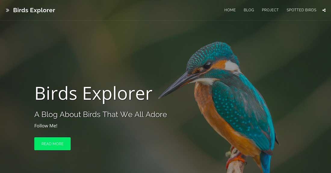 8 Birds Explorer