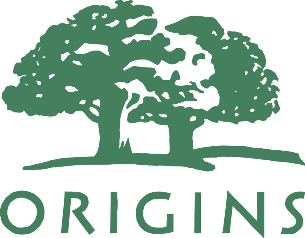 Understanding the Importance of Shapes in Logo Design - Origins logo