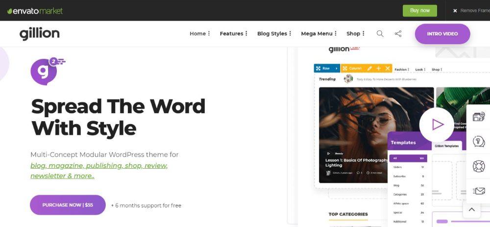 20 Best Minimalist WordPress Themes- Gillion